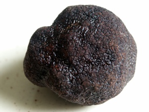 Tartufo Nero di Perigord - Credit to Wikipedia