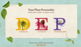 Plant personality